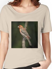 House Finch Women's Relaxed Fit T-Shirt