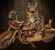 PURRING AND POSING - LONGING TO TAKE A RIDE-FELINE & MOTORCYCLE PICTURE by ✿✿ Bonita ✿✿ ђєℓℓσ