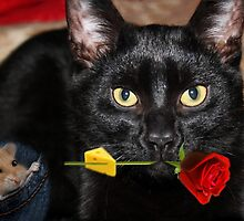 THE CAT & THE ROSE-THE ROSE HOLDING BAIT..THE MOUSE SITS HOPING IT DROPS  WHILE HE WAITS. by ╰⊰✿ℒᵒᶹᵉ Bonita✿⊱╮ Lalonde✿⊱╮