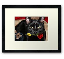 THE CAT & THE ROSE-THE ROSE HOLDING BAIT..THE MOUSE SITS HOPING IT DROPS  WHILE HE WAITS. Framed Print
