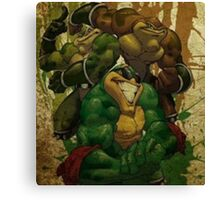 Super BattleToads Canvas Print
