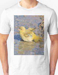 Masked Weaver - African Wild Birds - Happy Days T-Shirt