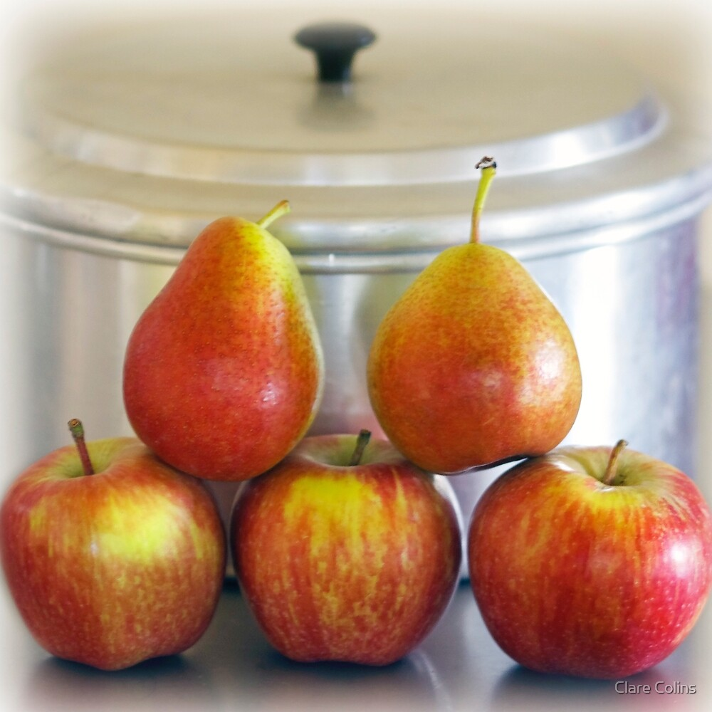 Up the Apples and Pears by Clare Colins