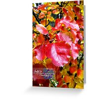 blazing pear tree Greeting Card