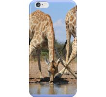 Giraffe - African Wildlife Background - Splitting for Sips iPhone Case/Skin