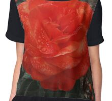 Close Rose Chiffon Top