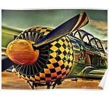 Warbird Poster