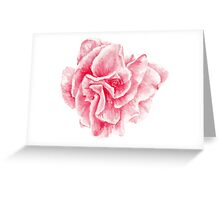 talisman . pink flower for love Greeting Card