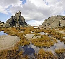Granite Sentries by Harry Oldmeadow
