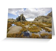 Granite Sentries Greeting Card