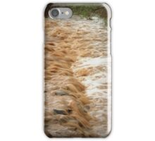 Muddy Waters iPhone Case/Skin