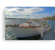 The family boat Metal Print
