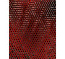 Net Art - 1 Layer - Red Hot Photographic Print