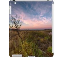 Valley Hues iPad Case/Skin