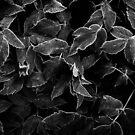 Hypersleep - Black Edition (Mug) by Matti Ollikainen