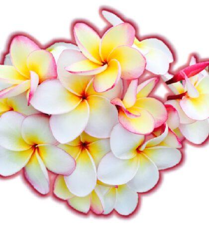 Tropical Blossoms Sticker