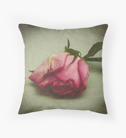 One  Throw Pillow