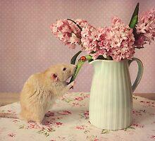 Poppy :) by Ellen van Deelen