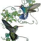 Hummingbirds Flight by redqueenself