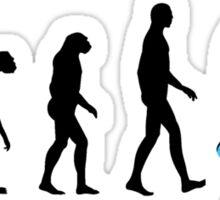 Evolution Snowboard Sticker