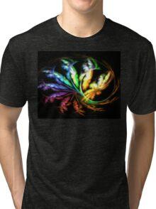 Rainbow Papillon Tri-blend T-Shirt