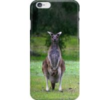 Photogenic Kangaroo with Joey in Pouch iPhone Case/Skin