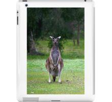 Photogenic Kangaroo with Joey in Pouch iPad Case/Skin