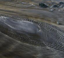sea rush by mrbobkittens