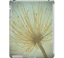 Beauty In Decay iPad Case/Skin