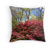 Isabella Plantation Throw Pillow
