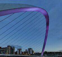 Millenium Pink by Trevor Kersley