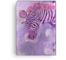 Lonely Zebra!  Canvas Print