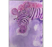 Lonely Zebra!  Photographic Print