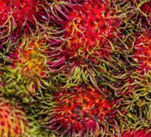 Rambutan Fruit Sticker