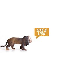 Like a lion by skyerocket