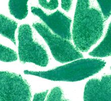 Night shade - Green Sticker