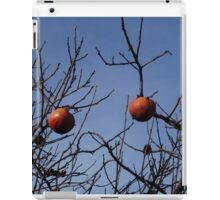 Italy winter iPad Case/Skin