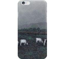 Longview Cows iPhone Case/Skin