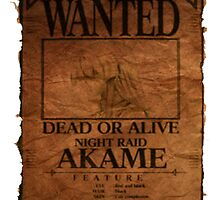 Akame - Wanted Dead or Alive by Xeno !