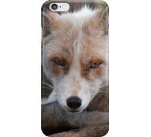 Fox iPhone Case/Skin