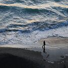 Fisherman and the Pacific by David Denny