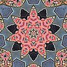Starfish by Scott Mitchell