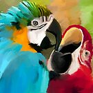 Macaws by John Ryan