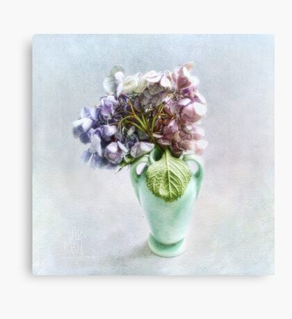 Endless Summer Hydrangea Still Life #2 Canvas Print
