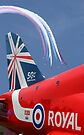 The Reds - 50 Display Seasons - Farnborough 2014 by Colin J Williams Photography