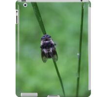 False Bumble iPad Case/Skin