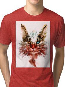 Maine coon Tri-blend T-Shirt