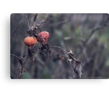 Dying Nature Canvas Print