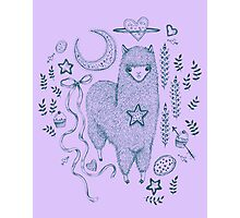 Alpaca Cookie Photographic Print