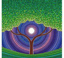 Happy Tree of Life Photographic Print
